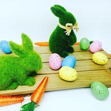 Laura Ann Celebrates - Easter